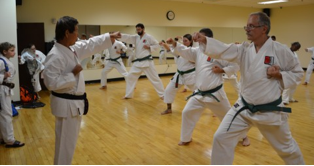 Shihan Teaches the Green Belts